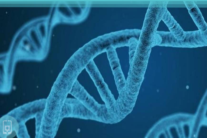 Testosterona Baixa - Genes