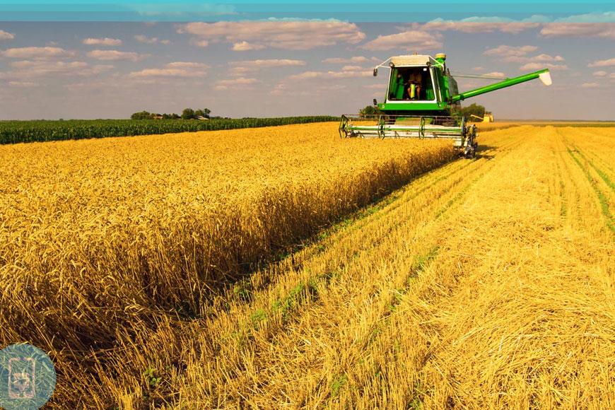 Alta atividade agrícola
