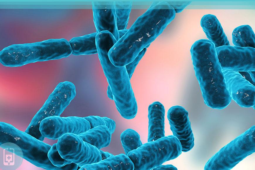 Candidíase - Probióticos
