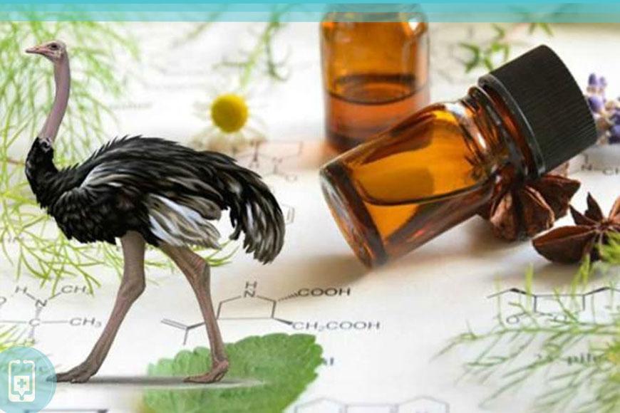Propriedades para saúde doóleo de avestruz