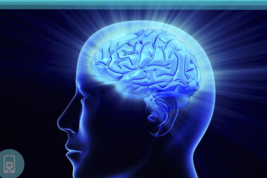 Óleo de avestruz é bom para o Cérebro.