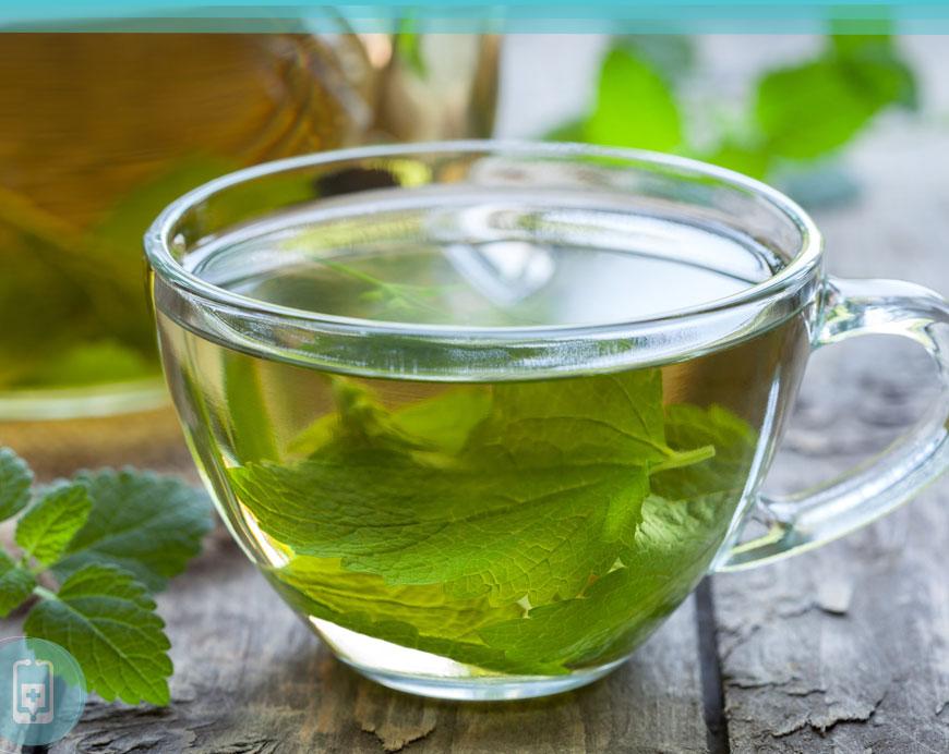 Chás para insônia -Chá de erva cidreira ou melissa